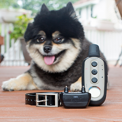 "GARMIN<sup>&reg;</sup> Delta<sup>&reg;</sup> XC Remote Dog Training System - This remote training device offers three different training options in just one collar to best suit your dog and training goals.  Featuring adjustable settings for continuous or momentary stimulation, vibration or tone with an easy-to-read LCD handheld display.  Rugged and durable this trainer is effective up to 1/2 mile.  Includes black 3/4"" collar, handheld transmitter and recharging accessories."