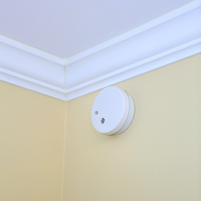 FIRE SENTRY™ Micro Profile Smoke and Fire Alarm - This compact smoke and fire alarm will alert you quickly with a loud, piercing 85-decibel horn.  Features low battery indicator, test button and power indicator light.